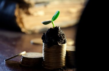 Salary growing plant coin